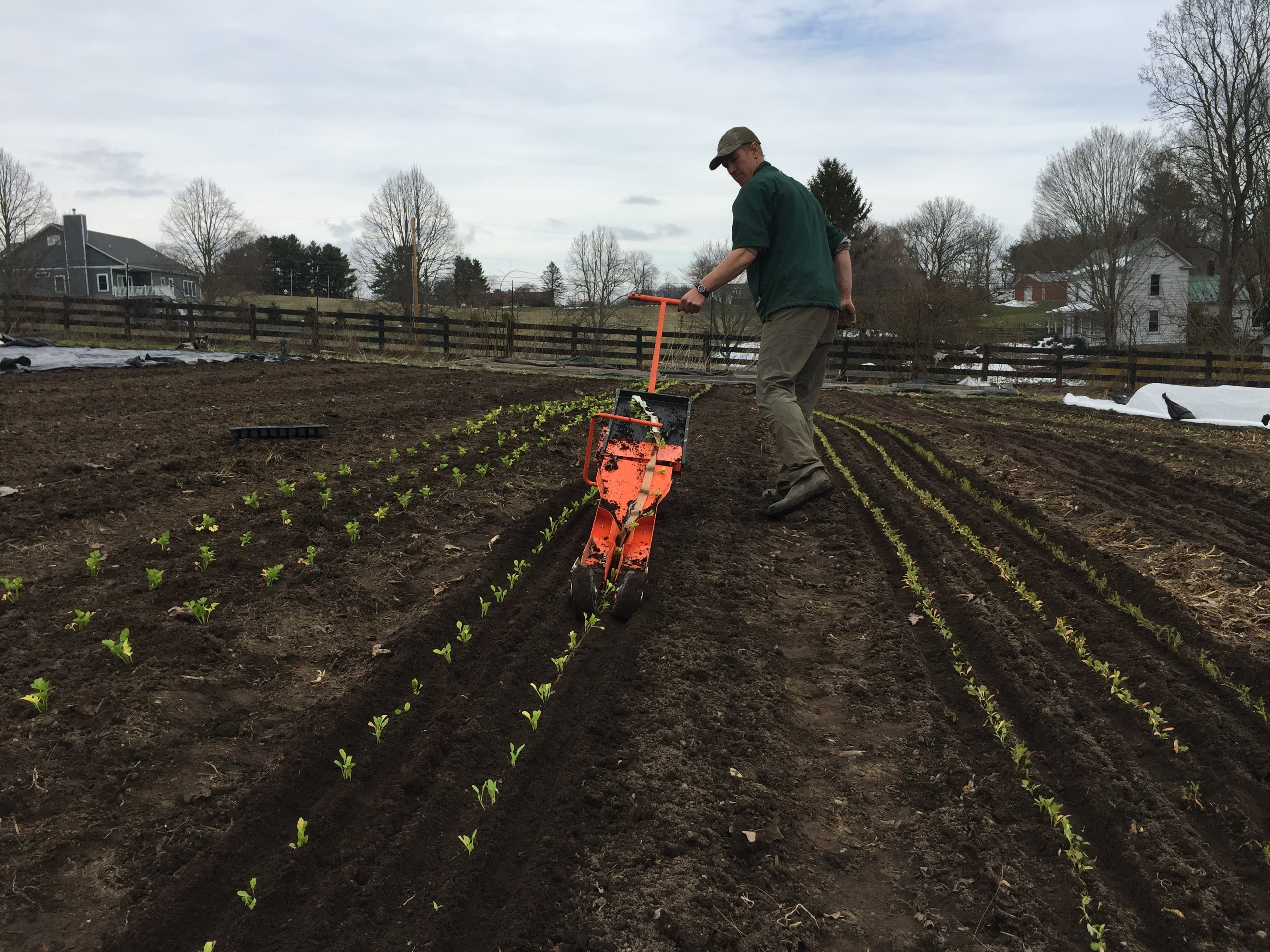 Glade Road Growing – Glade Road Growing